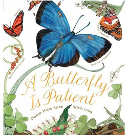 CHRO* A Butterfly Is Patient