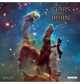 2020 Where Stars Are Born Calendar
