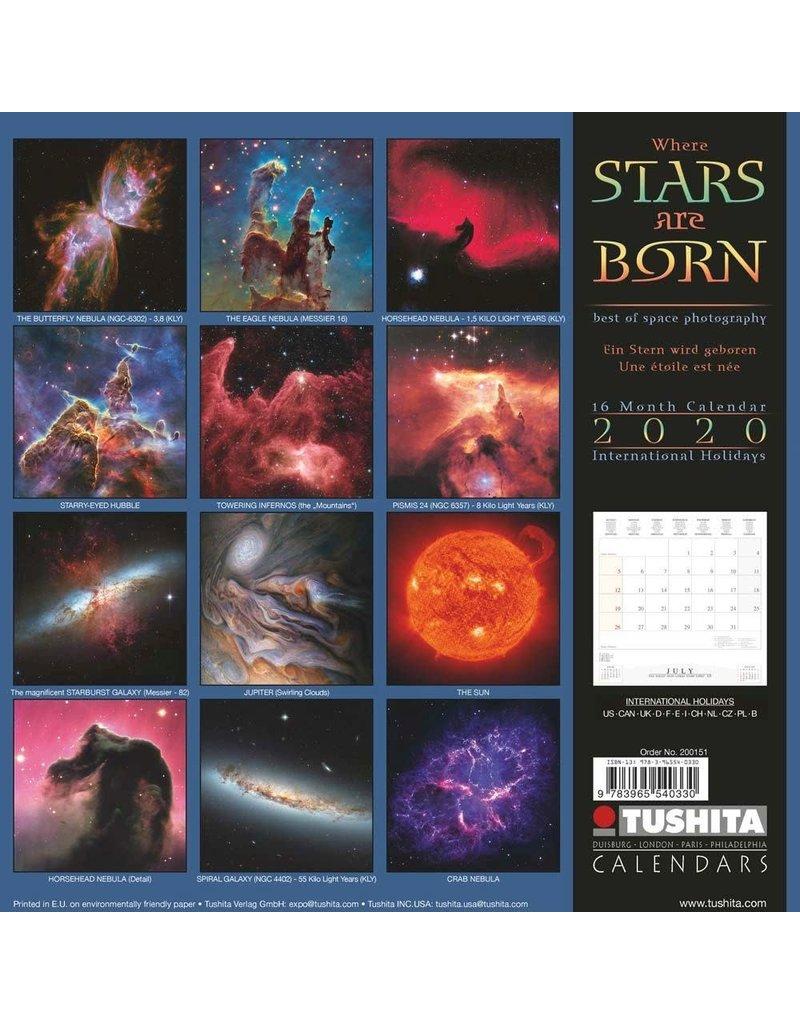 2020 Where Stars Are Born Calendar