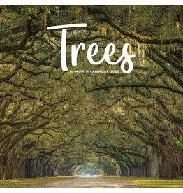 CAL 20 Trees / Wall