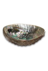 Smudge Accesories Abalone Shell LG Burner