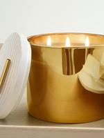 Frasier Fir 3 Wick Gold Candle