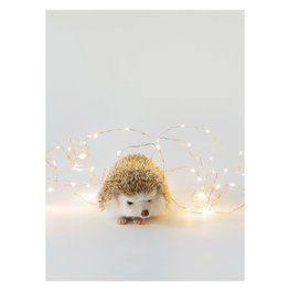 Card BX XMAS Hedgehog & Lights