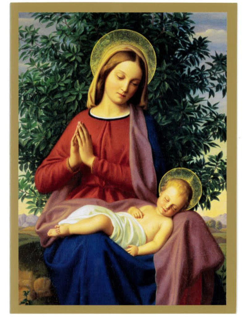 Card 8pk XMAS Madonna & Child