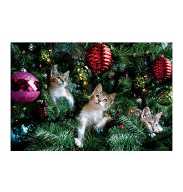 Card BX XMAS Kittens Xmas Tree