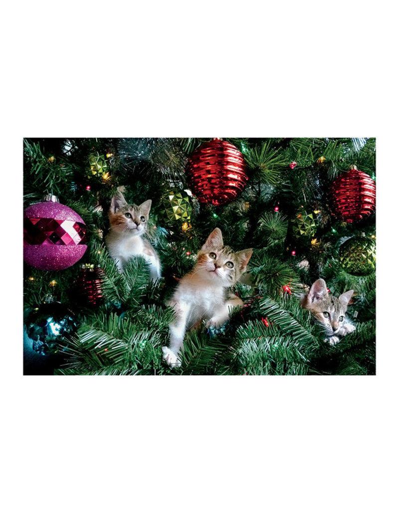 Card BX XMAS Kittens Xmas Tree