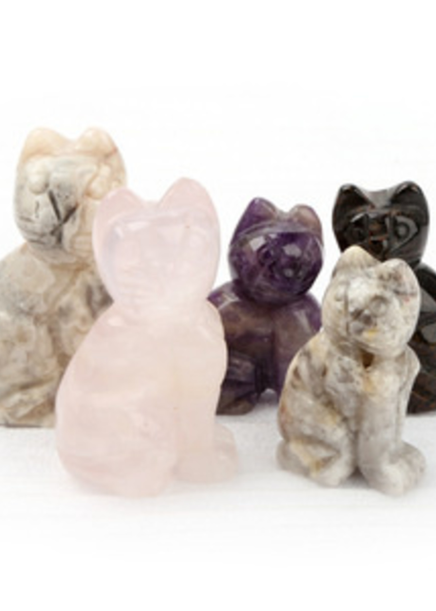 Cat Stone Asst