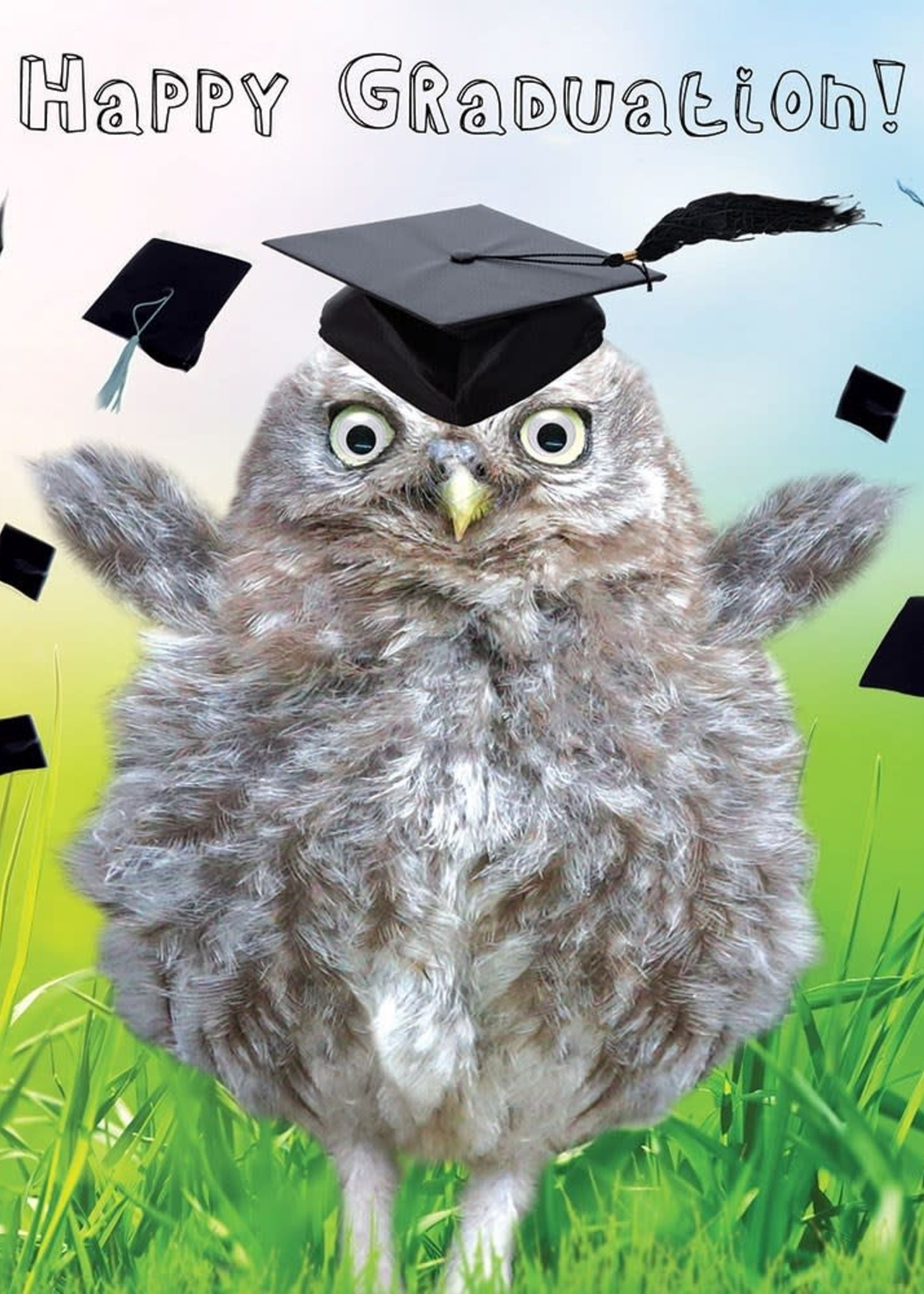 Card GRAD Owl w Google Eyes