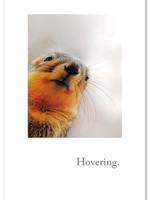 Card GW Hovering Squirrel