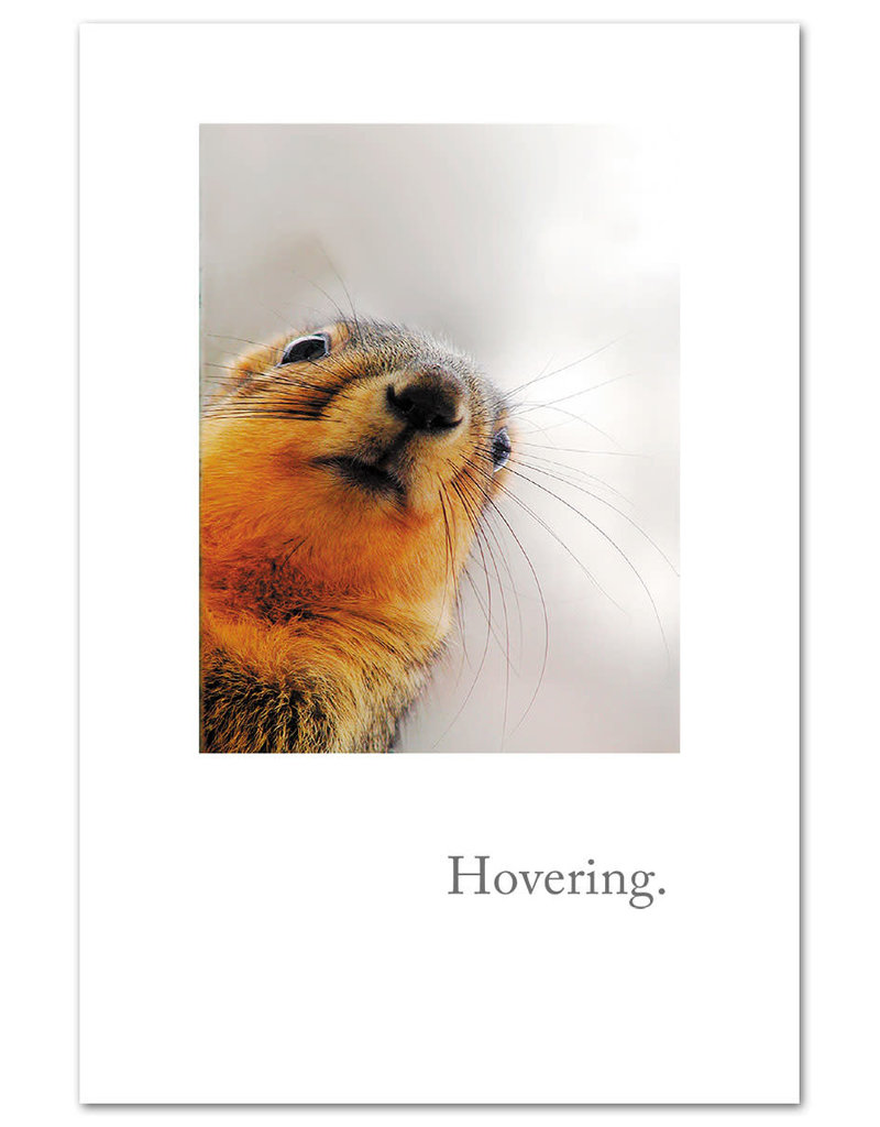 Card GW Hovering Squirrel