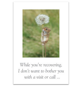 Card GW Harvest Mouse on Dandelion