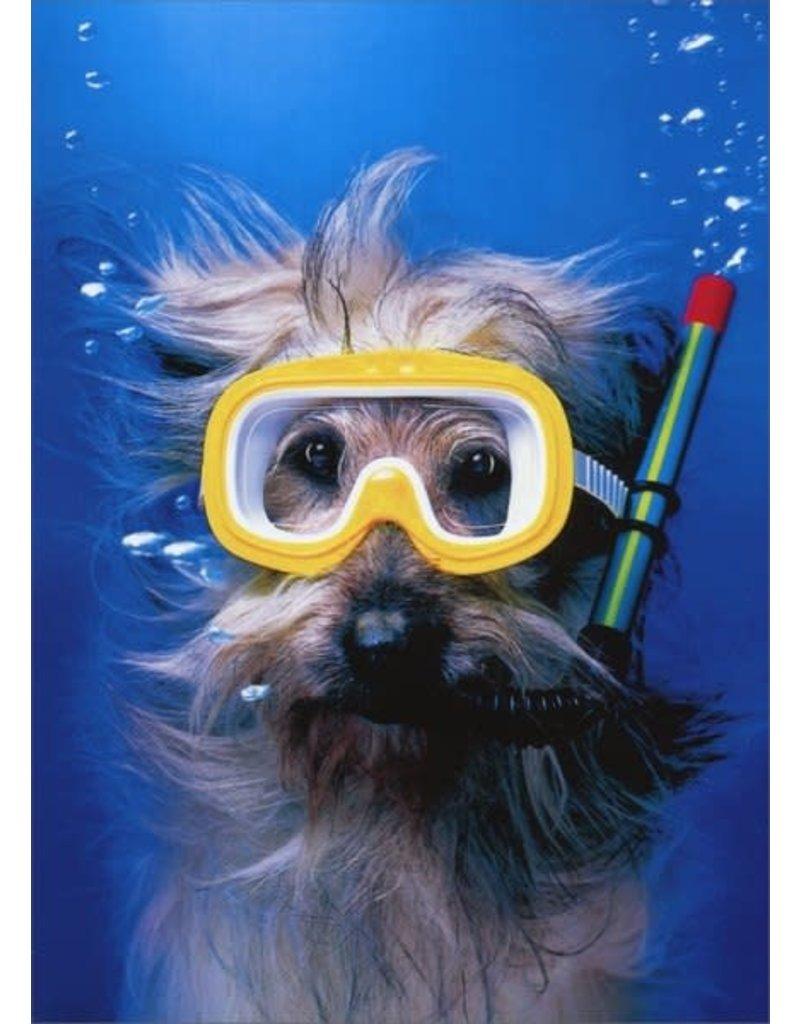 Card TY Snorkeling Dog