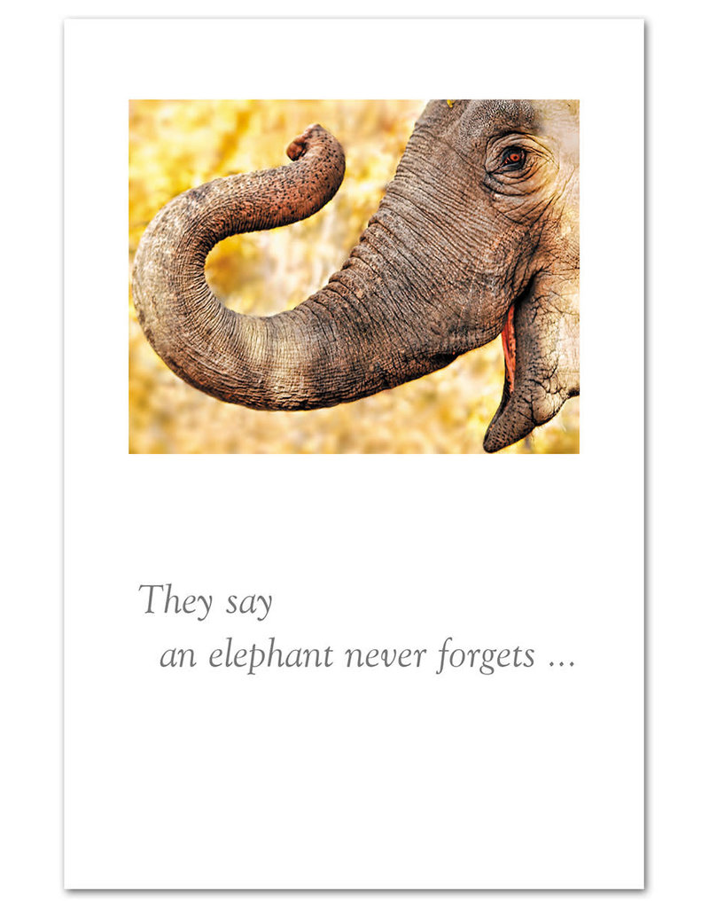 Card TY Elephant They Say And Elephant Never Forgets....