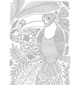 Card COLORING Toucan