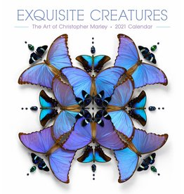 Cal 21 Exquisite Creatures / Wall
