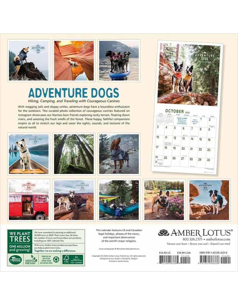 Cal 21 Adventure Dogs / Wall