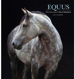 Cal 21 Equus Wall