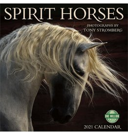 Cal 21 Spirit Horses / Wall