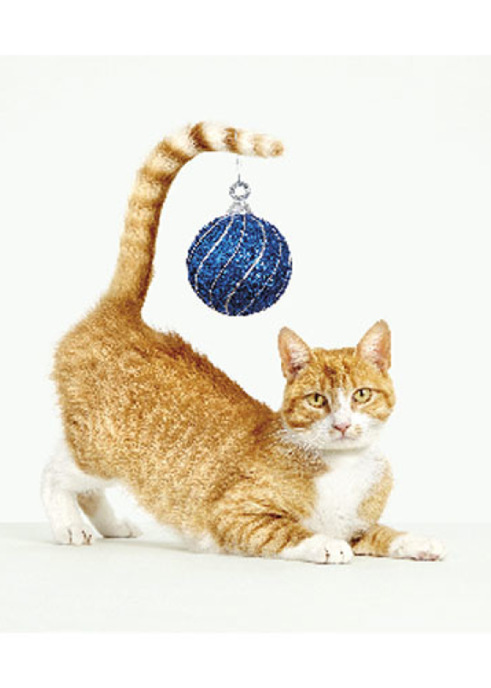 Card BX XMAS Cat With Ornament on Tail