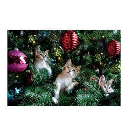 Card BX XMAS Kittens in Christmas Tree