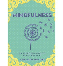 STERG A Little Bit of Mindfullness - An Introduction to Being Present