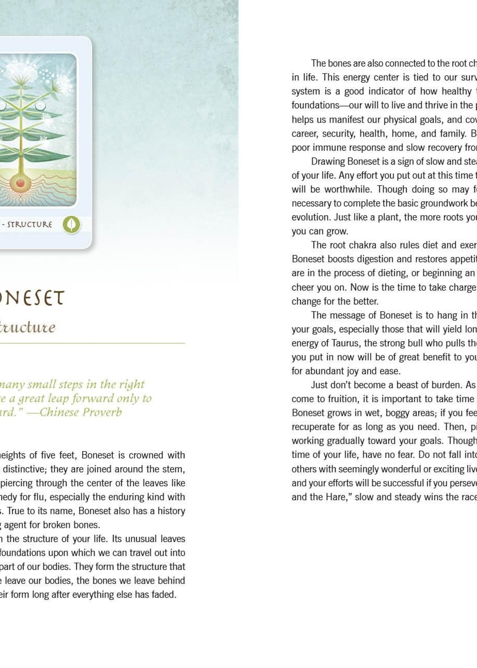 Book The Herbal Healing Deck