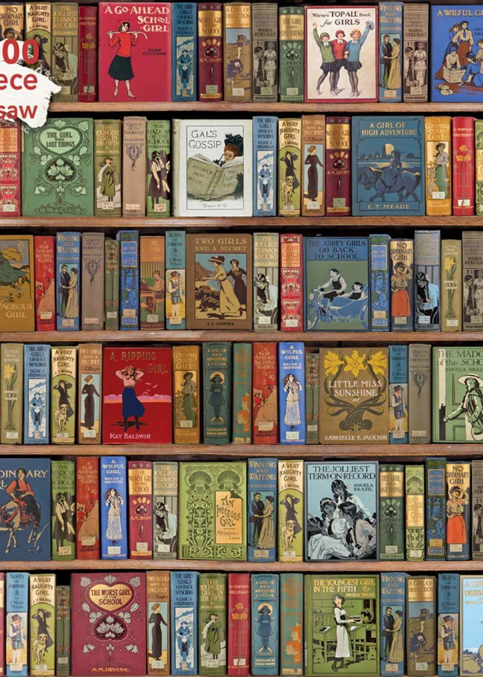 Bodleian Libraries Bookshelves 1000pc Puzze