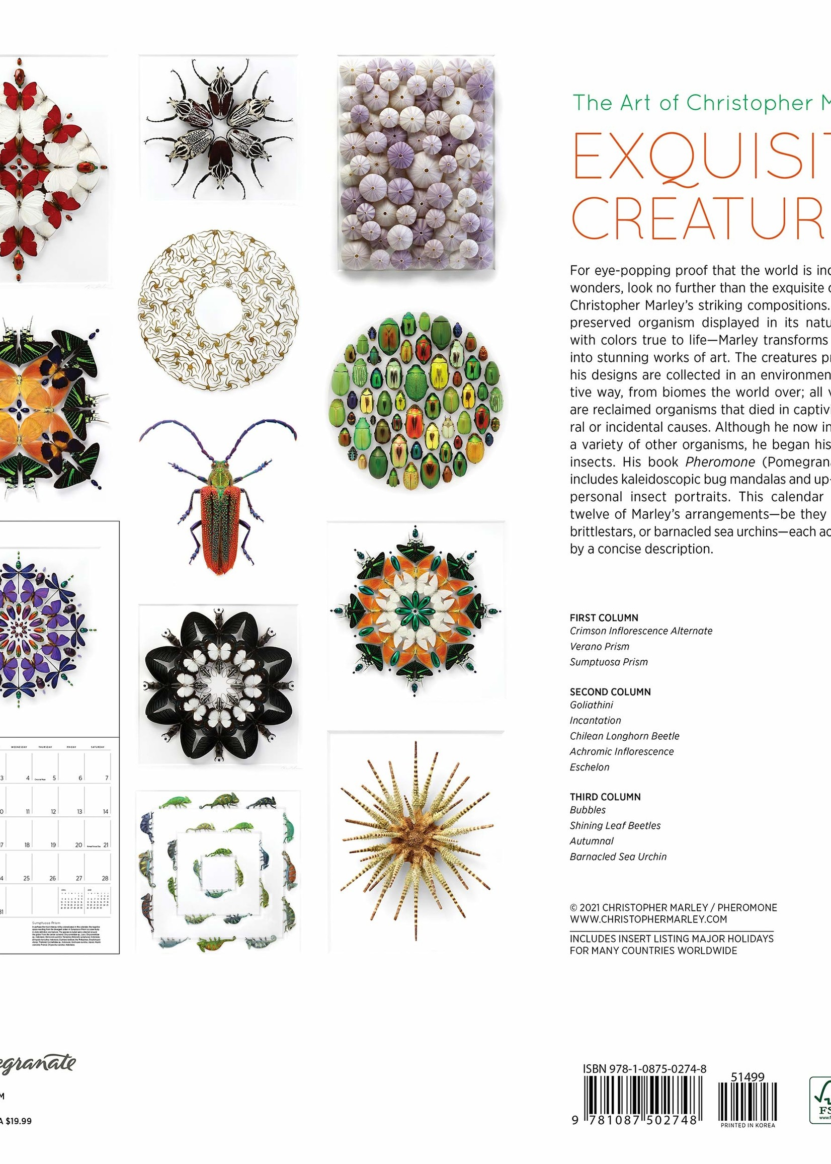 Cal 22 Exquisite Creatures Wall