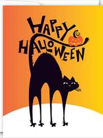 Half-Black Cat
