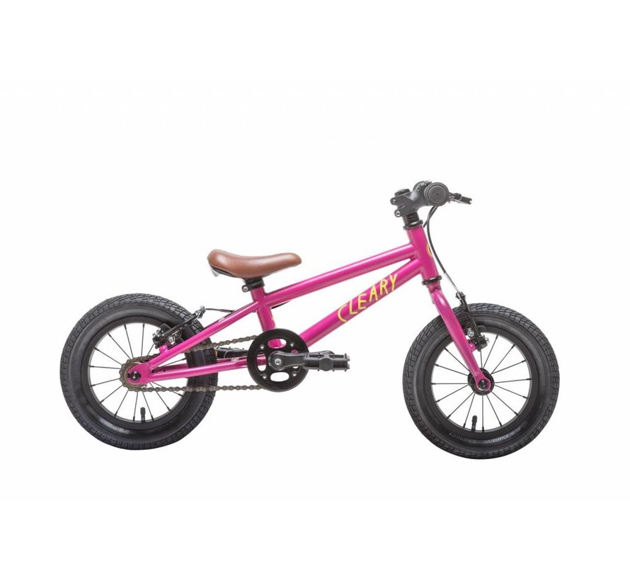 "Cleary Gecko 12"" Kid's Bike"