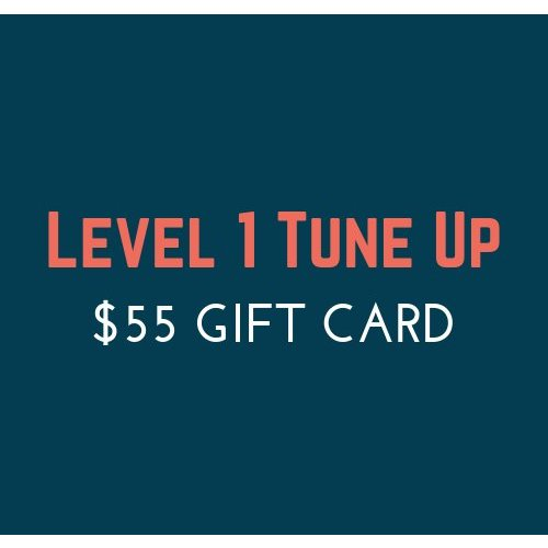 $55 Tune Up Gift Card