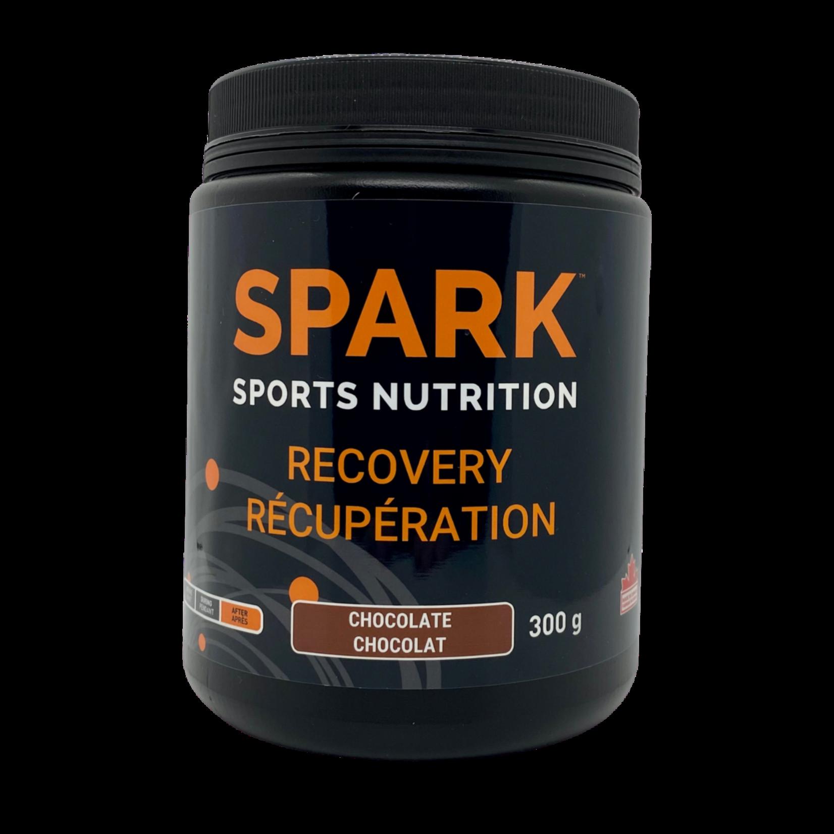 SPARK SPARK recovery Chocolate
