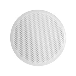Perforated Filter Plate for 24'' Table-top Buchner Funnel