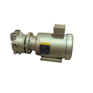 Dekker Vacuum Technologies Liquid Ring Vacuum Pump (DV0035D-MB4-SGL)
