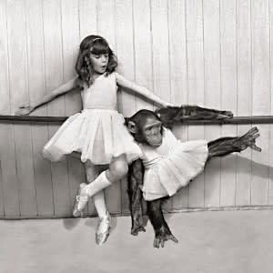 Ballerina Monkey Greeting Card, Incognito 04792