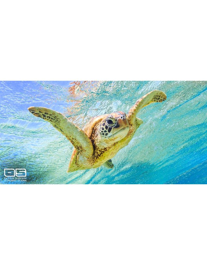 Ocean Surfari Swimming Sea Turtle Towel