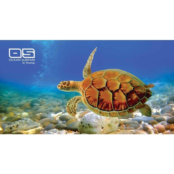 Beach Towel Turtle