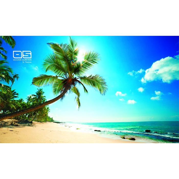 Ocean Surfari Beach Towel Beach View