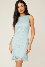 Ace of Mint Lace Dress