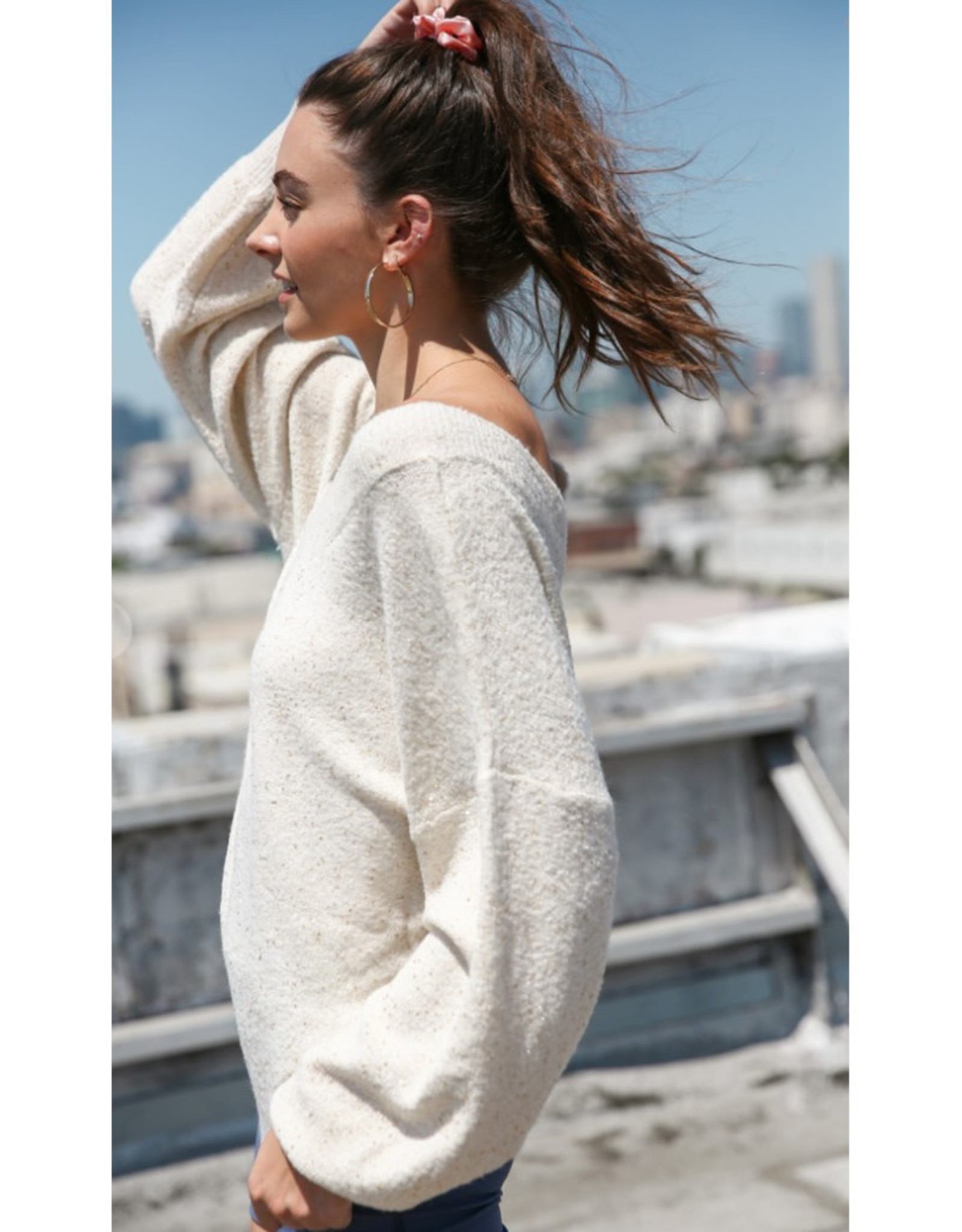 Loose Fit Sequined Sweater