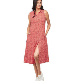 Fit and Flare Picnic Dress