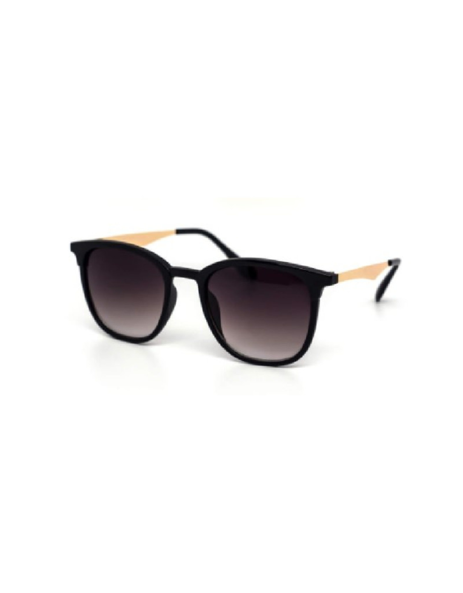 Sunglasses - Black Frames with Light Temples