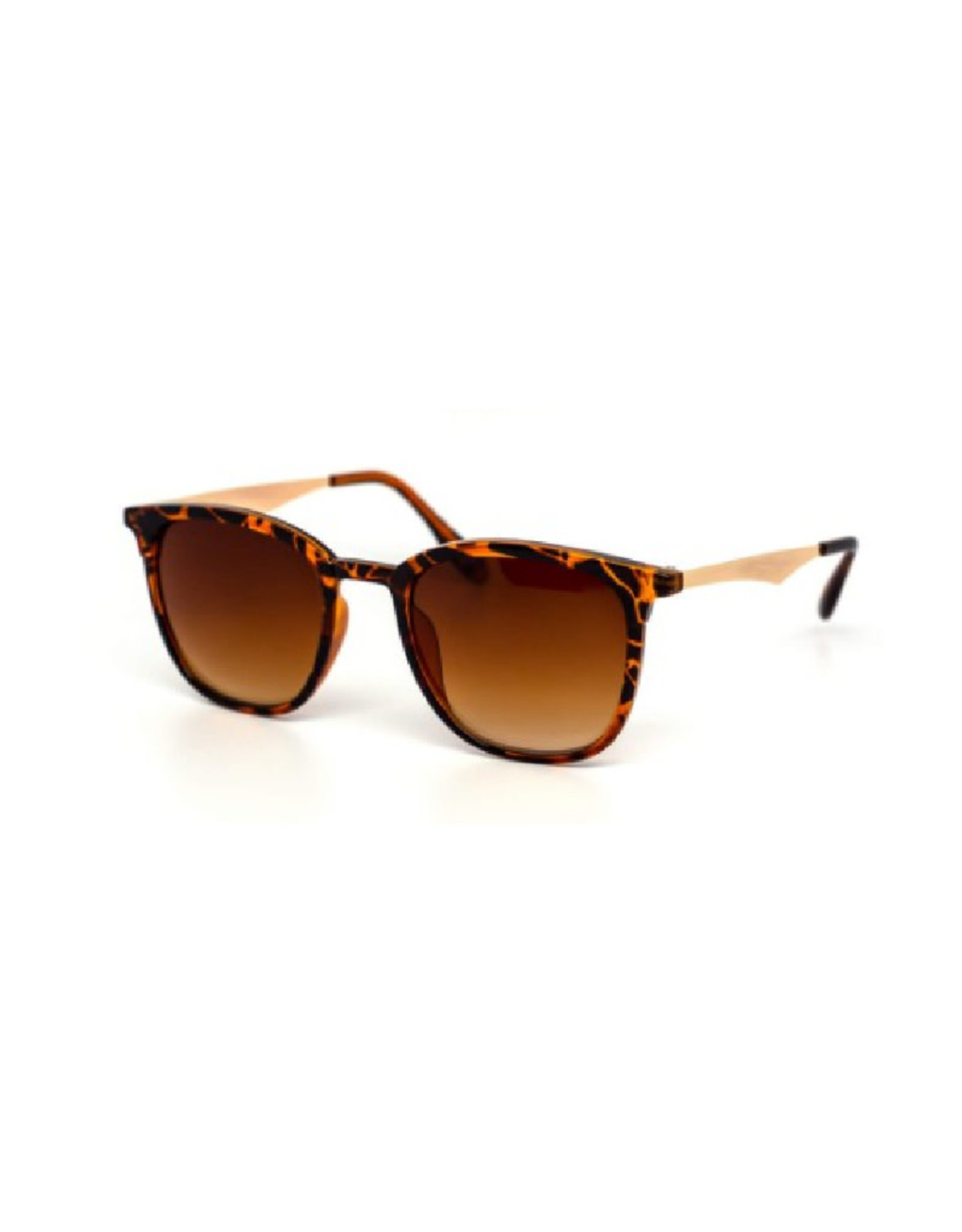 Sunglasses - Tortoise Frames with Light Temples