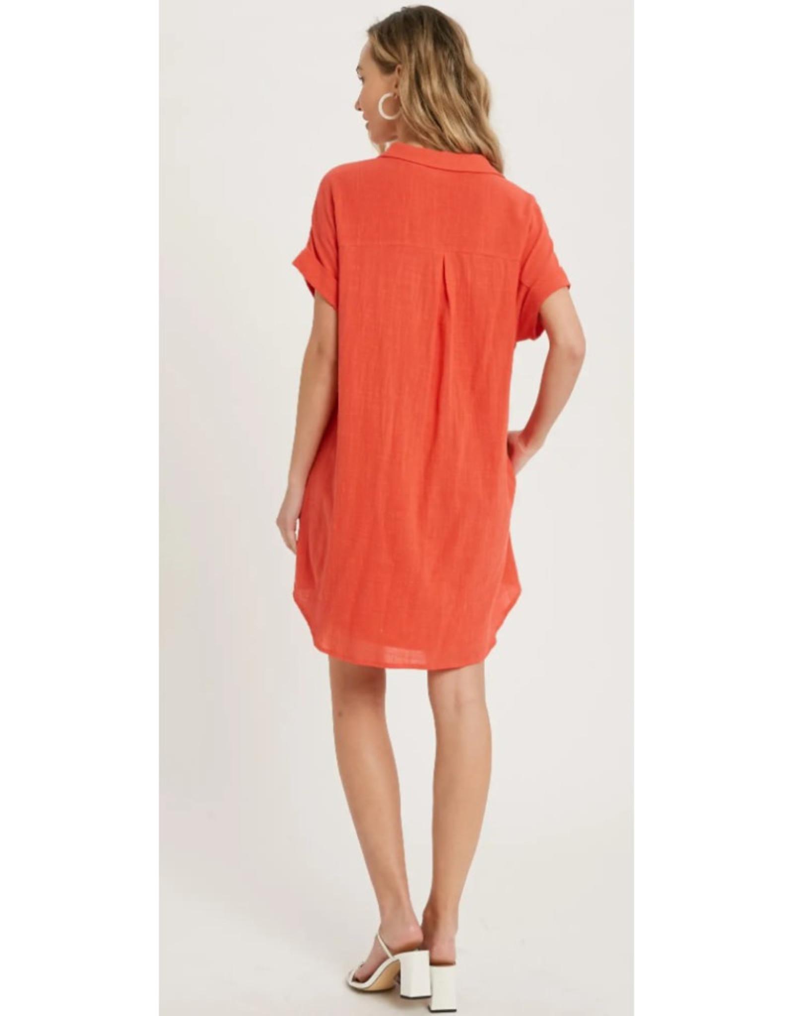 Button Up Shirt Dress with Pocket