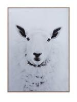 Framed Canvas Wall Decor w/ Sheep