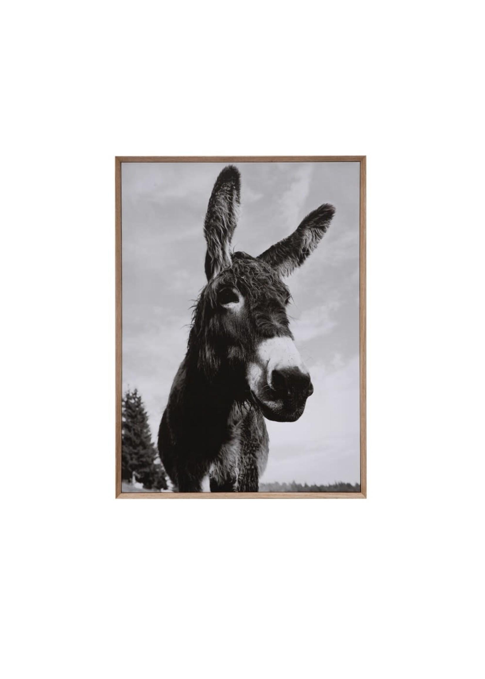 creative Co-op Donkey Wall Canvas