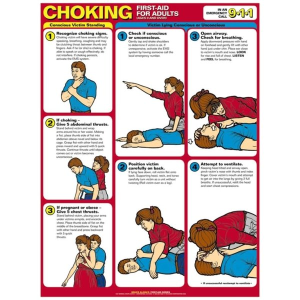 """Choking First Aid For Adult - Laminated Poster 8.5"""" x 11"""""""