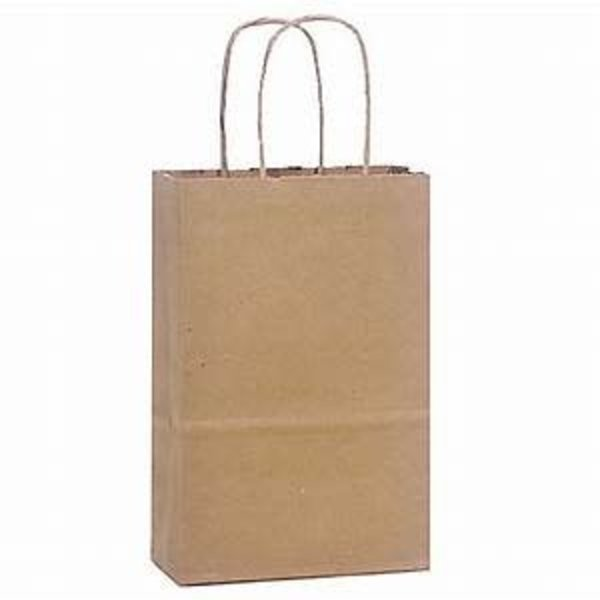 "Small 9 5/8"" x 5 1/4"" x 13 3/8"" Natural Kraft Shopping Bag with Handles - 250/Bundle"