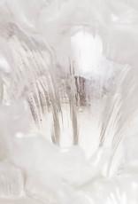 LIULI Crystal Art Crystal Peony Bloom (Powdered White) (Limited Edition)