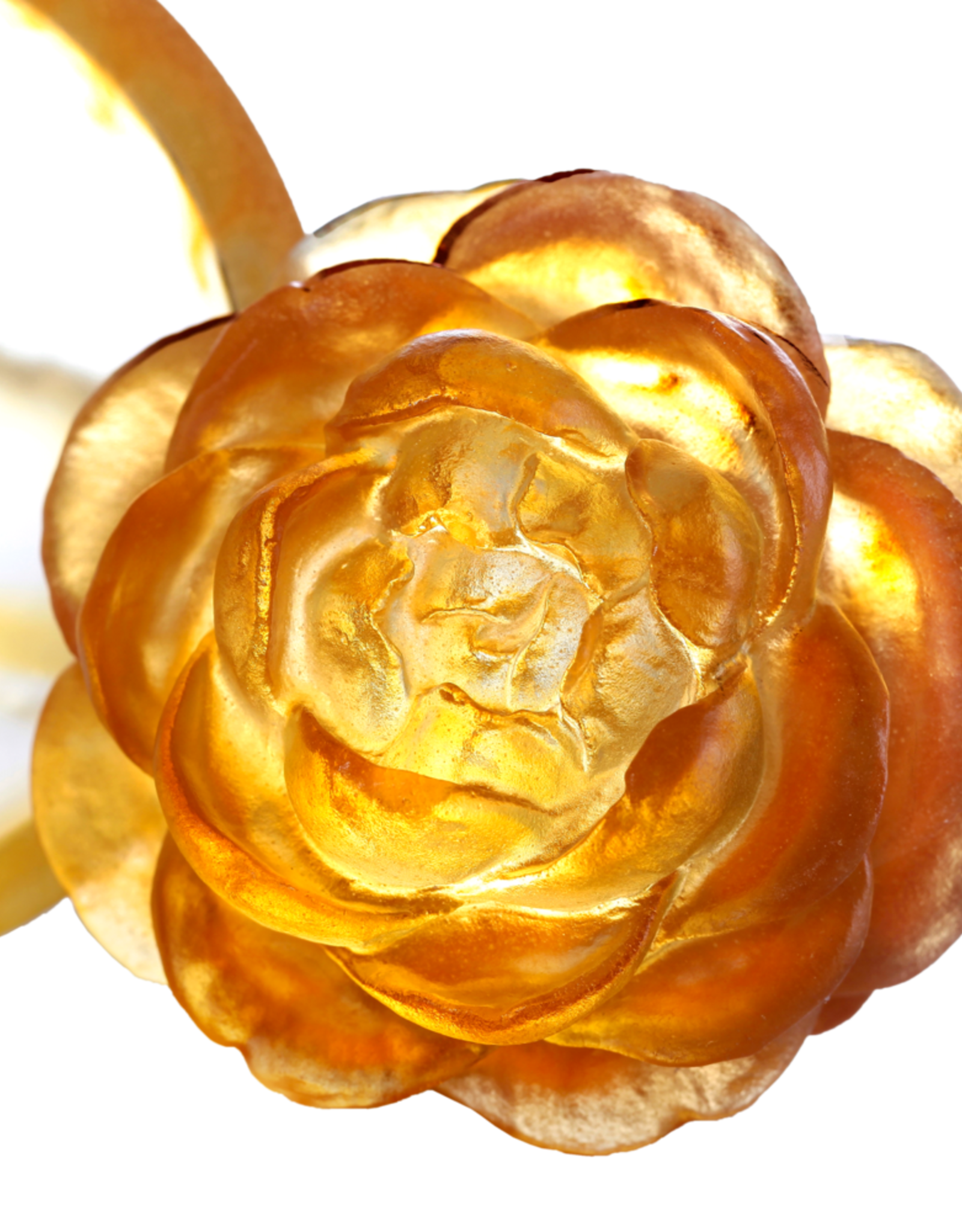 "LIULI Crystal Art Crystal Camellia Bloom ""Destined Harmony"" Limited Edition"